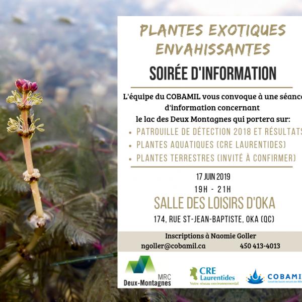 plantes-exotiques-envahissantes2-1-002